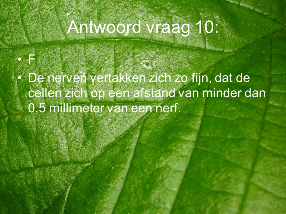 Antwoord vraag 10: F.