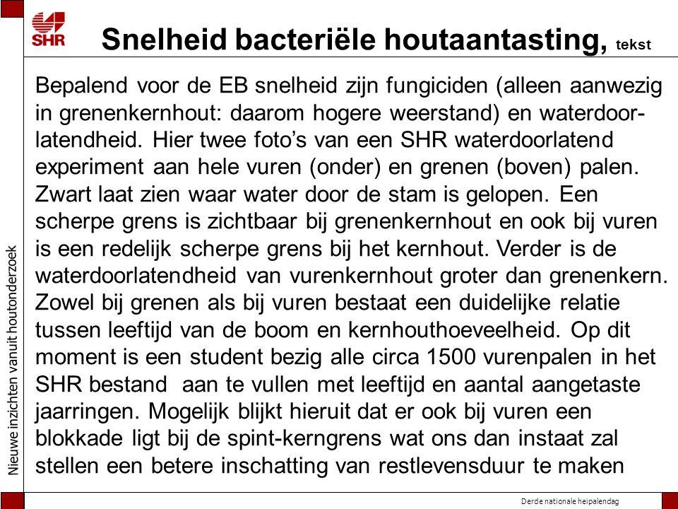 Snelheid bacteriële houtaantasting, tekst