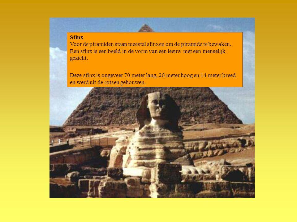 Sfinx Voor de piramiden staan meestal sfinxen om de piramide te bewaken. Een sfinx is een beeld in de vorm van een leeuw met een menselijk gezicht.