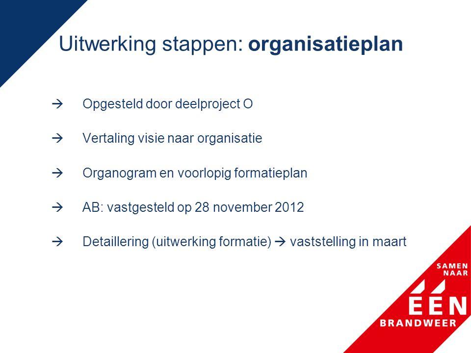 Uitwerking stappen: organisatieplan