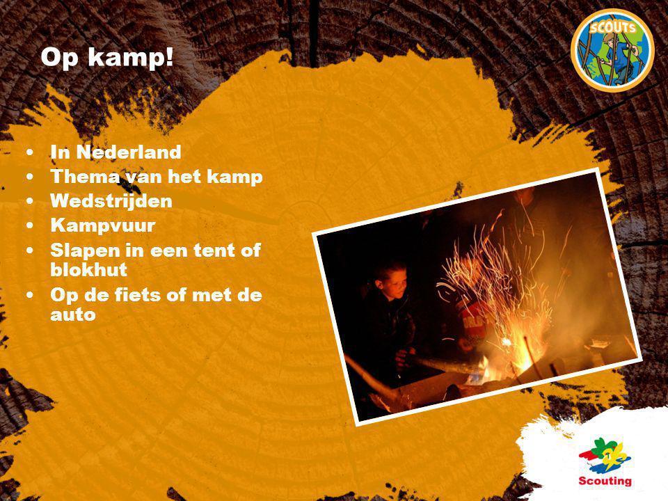 Op kamp! In Nederland Thema van het kamp Wedstrijden Kampvuur