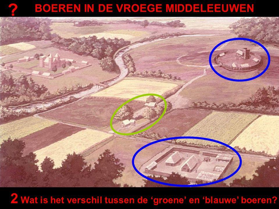 2 Wat is het verschil tussen de 'groene' en 'blauwe' boeren