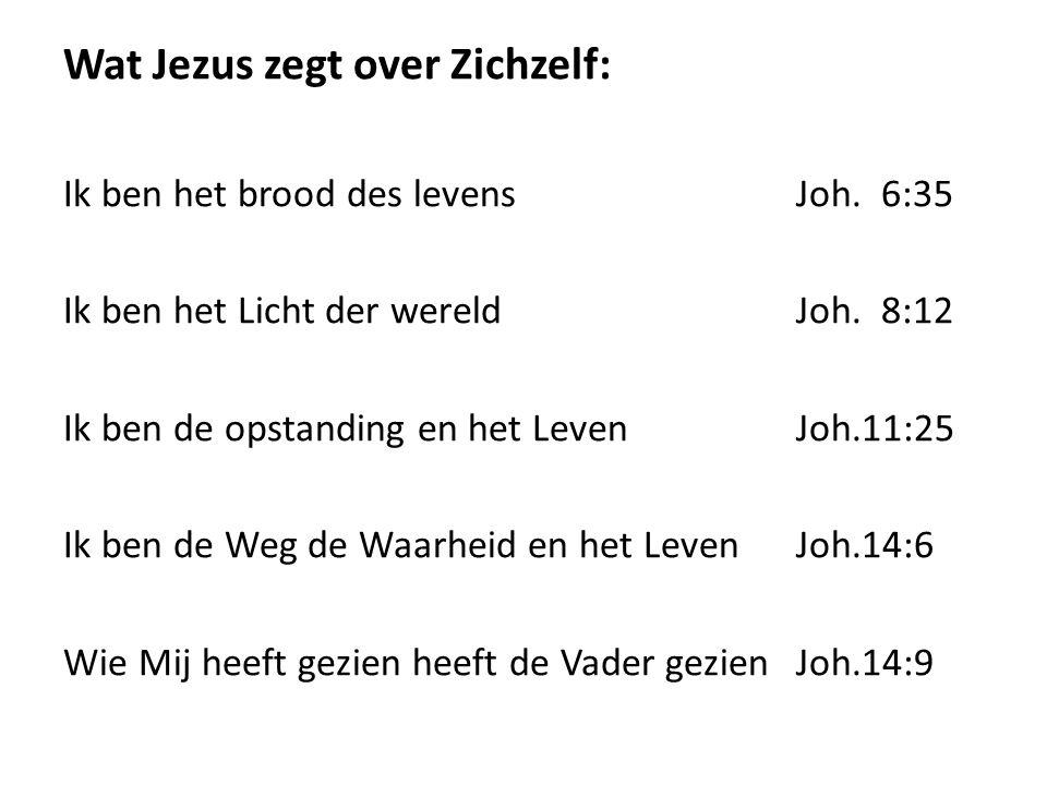 Wat Jezus zegt over Zichzelf: