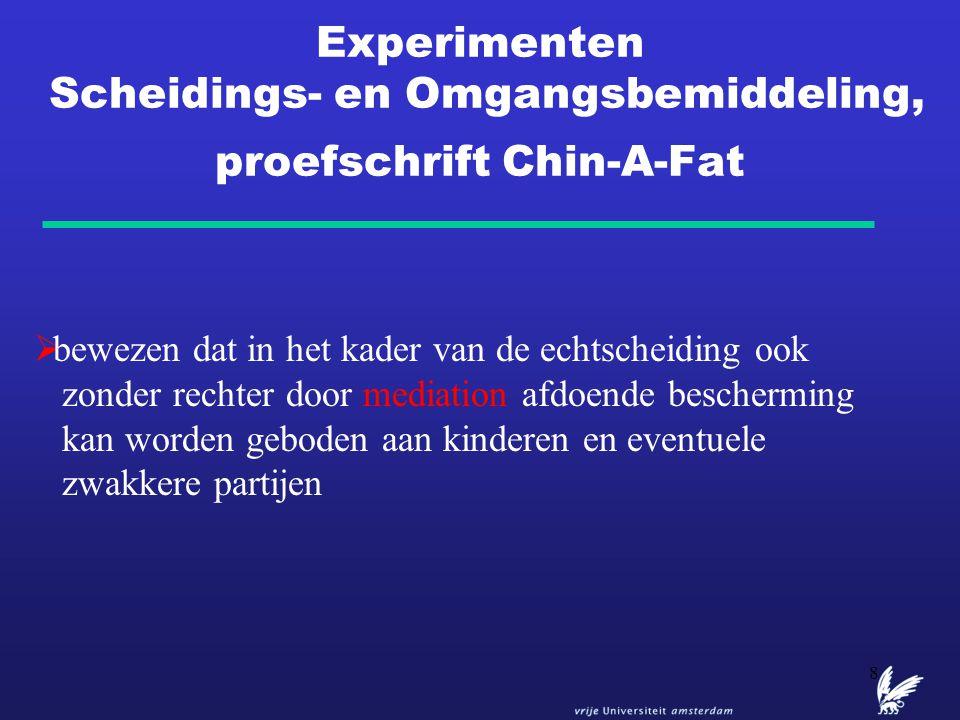 Experimenten Scheidings- en Omgangsbemiddeling, proefschrift Chin-A-Fat