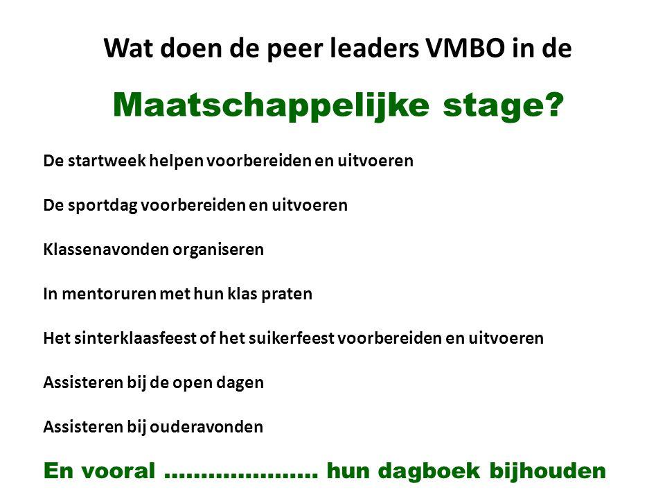 Wat doen de peer leaders VMBO in de