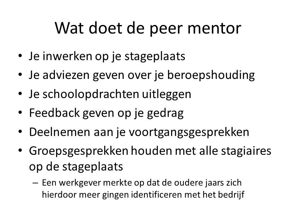 Wat doet de peer mentor Je inwerken op je stageplaats