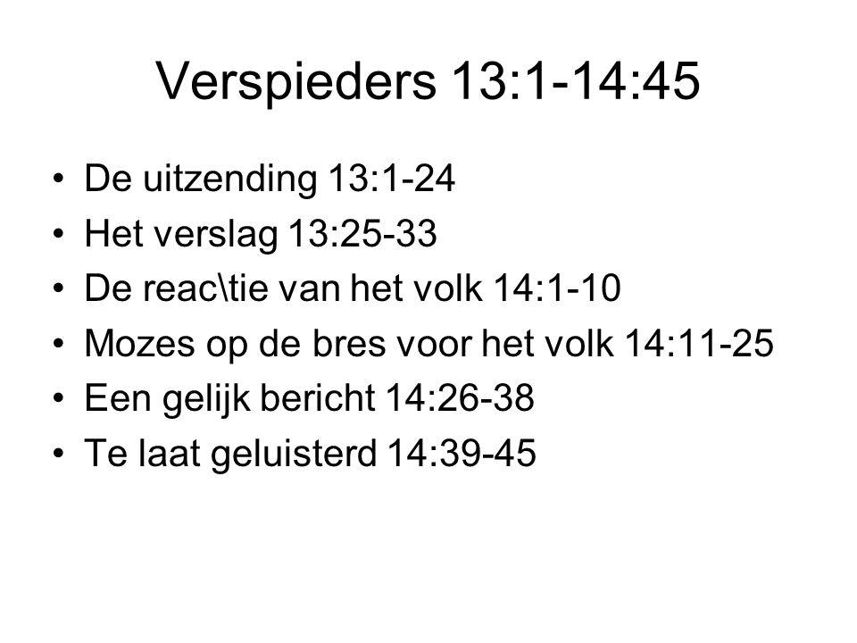 Verspieders 13:1-14:45 De uitzending 13:1-24 Het verslag 13:25-33