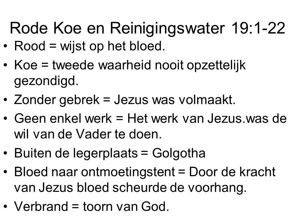 Rode Koe en Reinigingswater 19:1-22