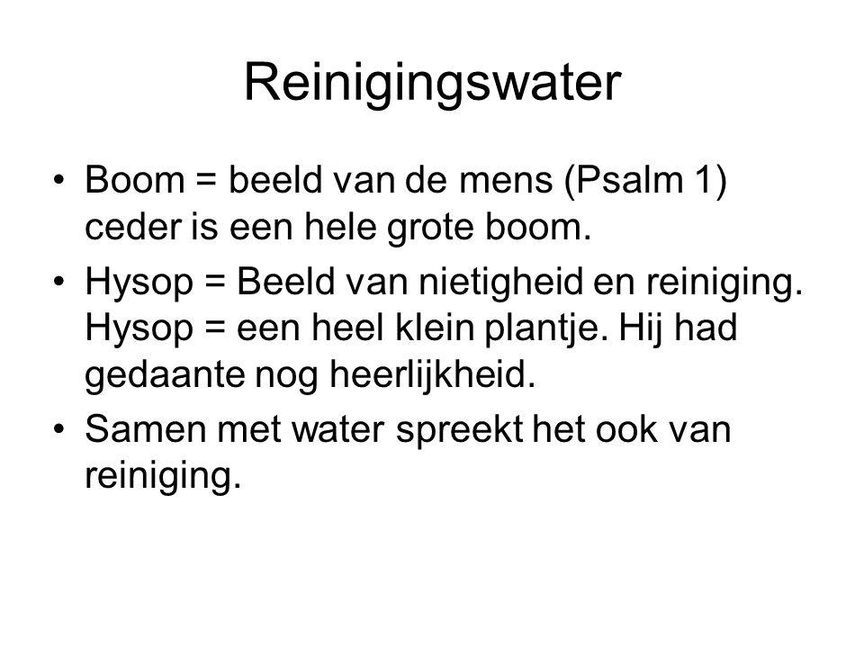 Reinigingswater Boom = beeld van de mens (Psalm 1) ceder is een hele grote boom.