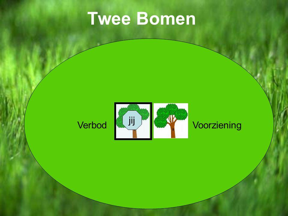 Twee Bomen jij Verbod Voorziening