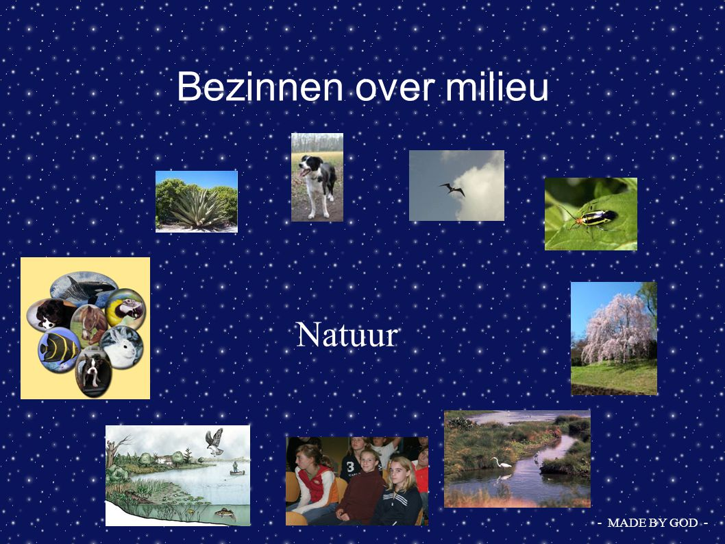 Bezinnen over milieu Natuur - MADE BY GOD -