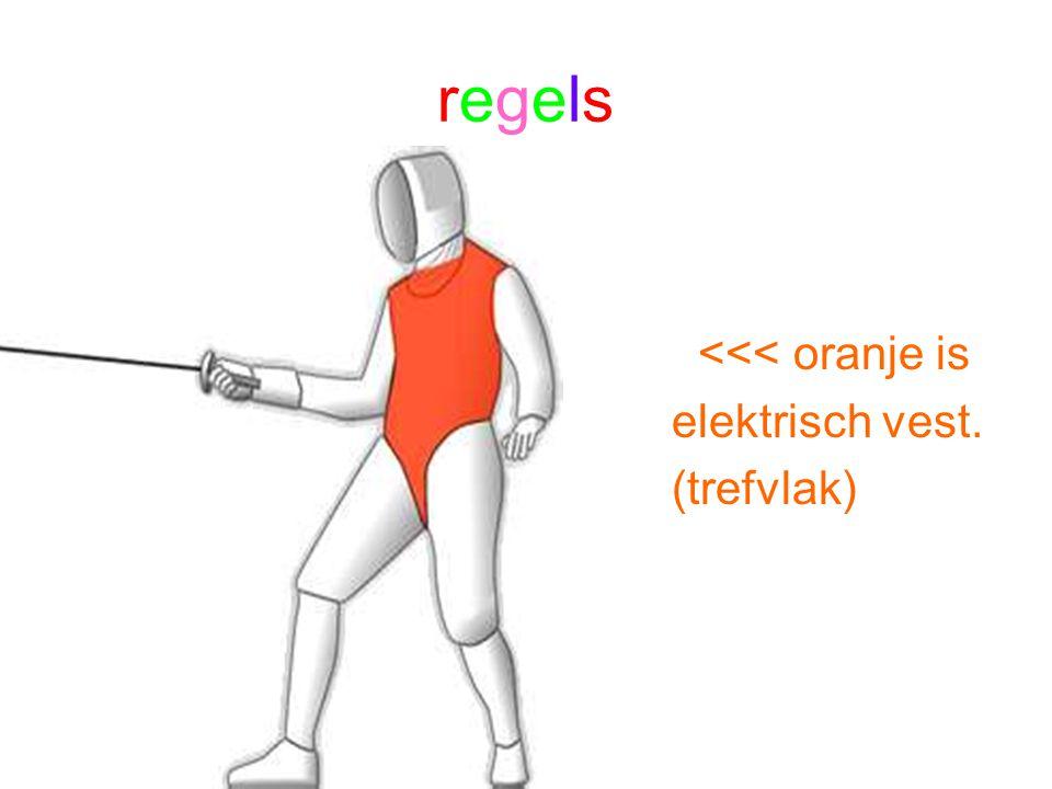regels <<< oranje is elektrisch vest. (trefvlak)