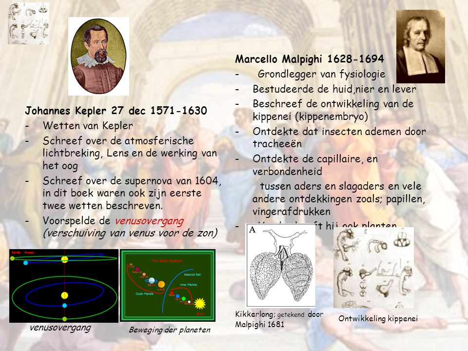 - Grondlegger van fysiologie Bestudeerde de huid,nier en lever