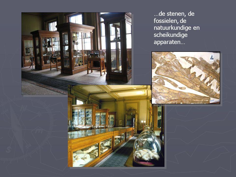 …de stenen, de fossielen, de natuurkundige en scheikundige apparaten…