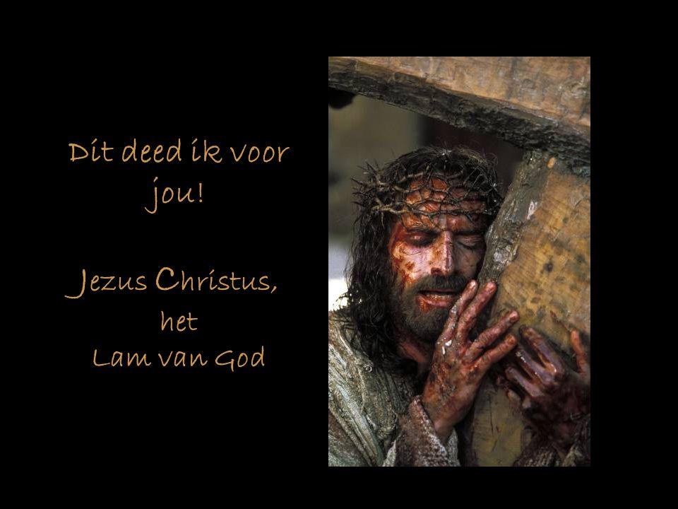 Dit deed ik voor jou! Jezus Christus, het Lam van God