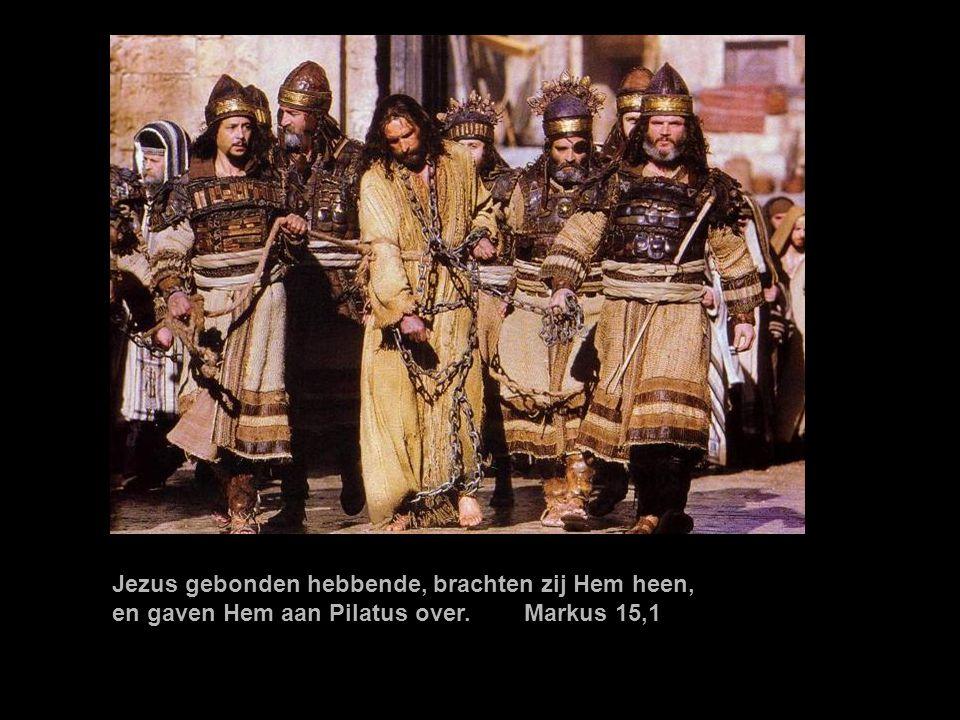 Jezus gebonden hebbende, brachten zij Hem heen,