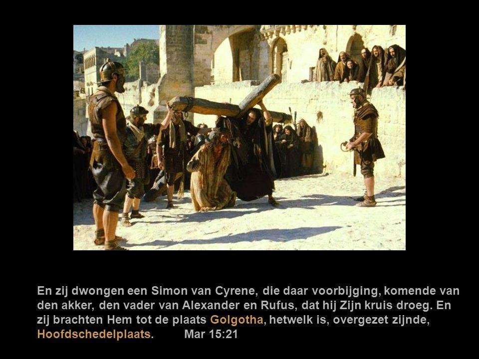 En zij dwongen een Simon van Cyrene, die daar voorbijging, komende van den akker, den vader van Alexander en Rufus, dat hij Zijn kruis droeg.