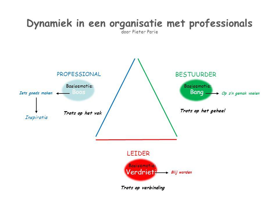 Dynamiek in een organisatie met professionals door Pieter Parie