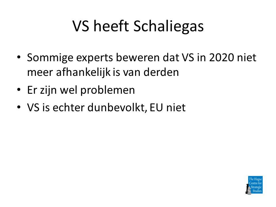 VS heeft Schaliegas Sommige experts beweren dat VS in 2020 niet meer afhankelijk is van derden. Er zijn wel problemen.