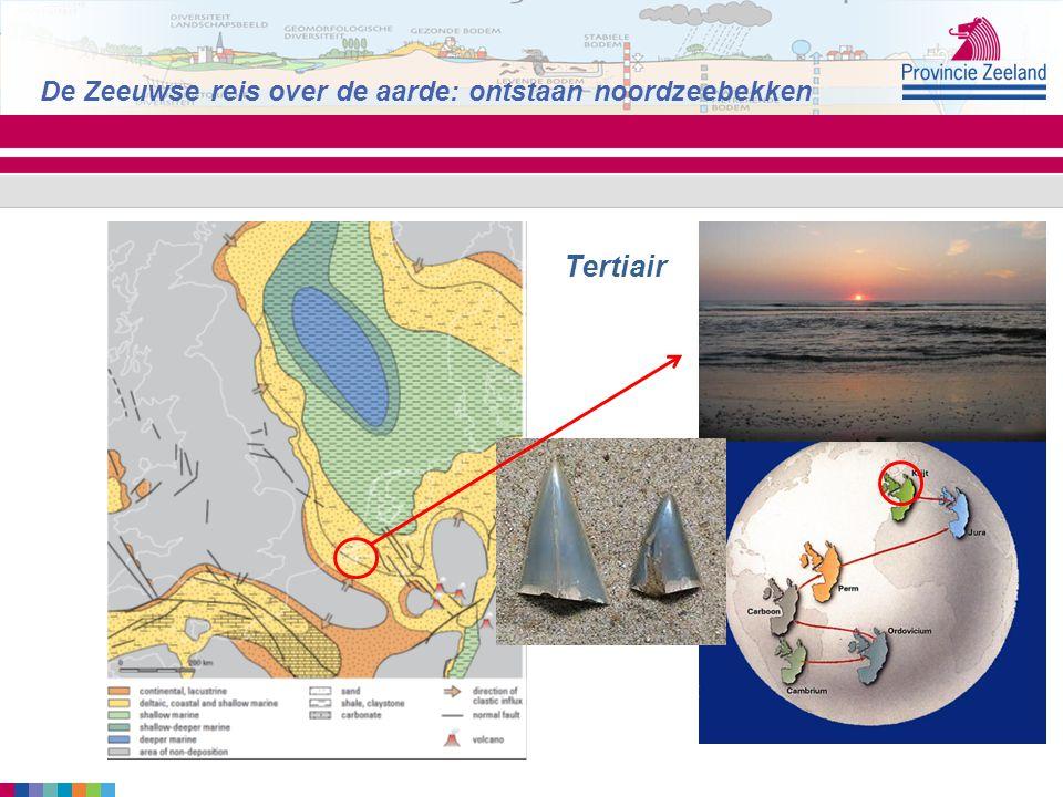 Tertiair De Zeeuwse reis over de aarde: ontstaan noordzeebekken