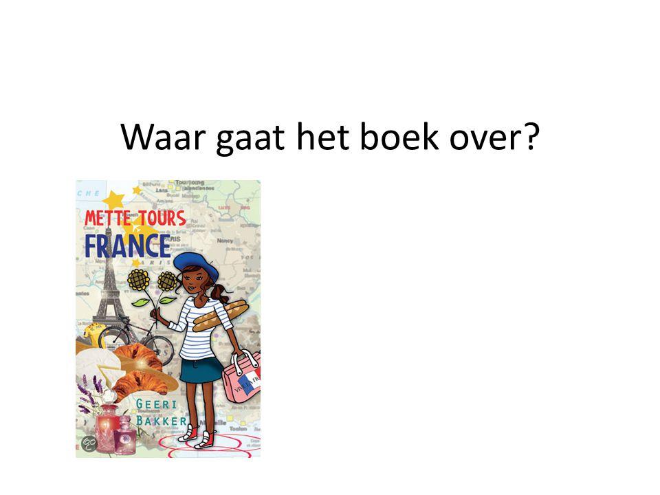 Waar gaat het boek over