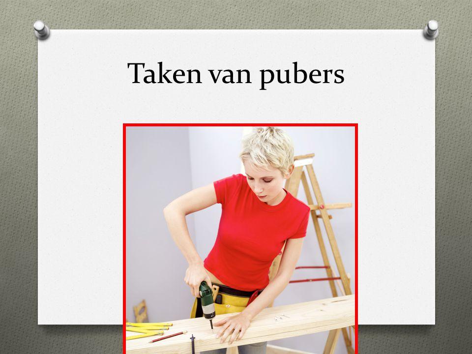 Taken van pubers