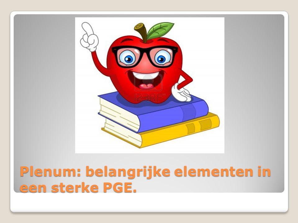 Plenum: belangrijke elementen in een sterke PGE.