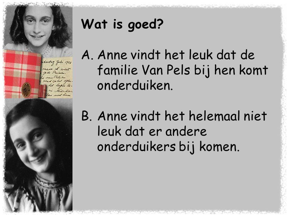 Wat is goed Anne vindt het leuk dat de familie Van Pels bij hen komt onderduiken.