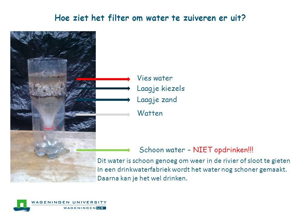Hoe ziet het filter om water te zuiveren er uit