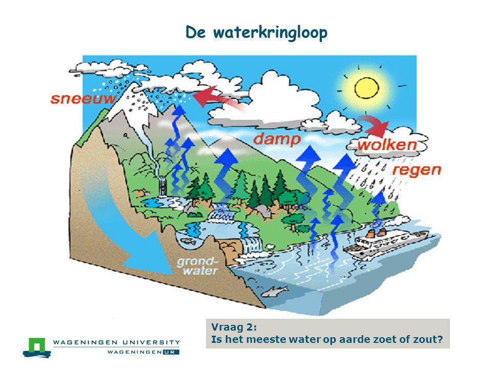 De waterkringloop Vraag 2: Is het meeste water op aarde zoet of zout