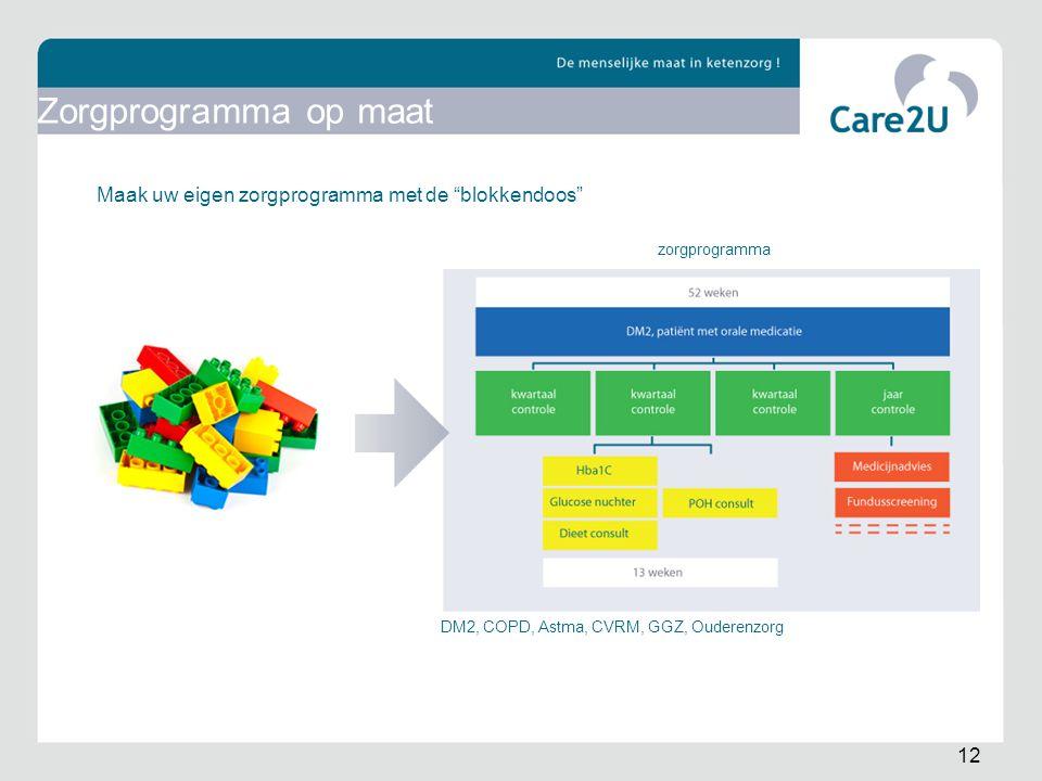 Zorgprogramma op maat Maak uw eigen zorgprogramma met de blokkendoos