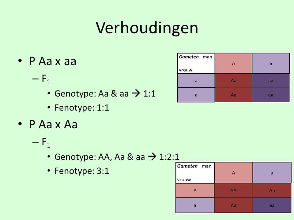 Verhoudingen P Aa x aa P Aa x Aa F1 Genotype: Aa & aa  1:1