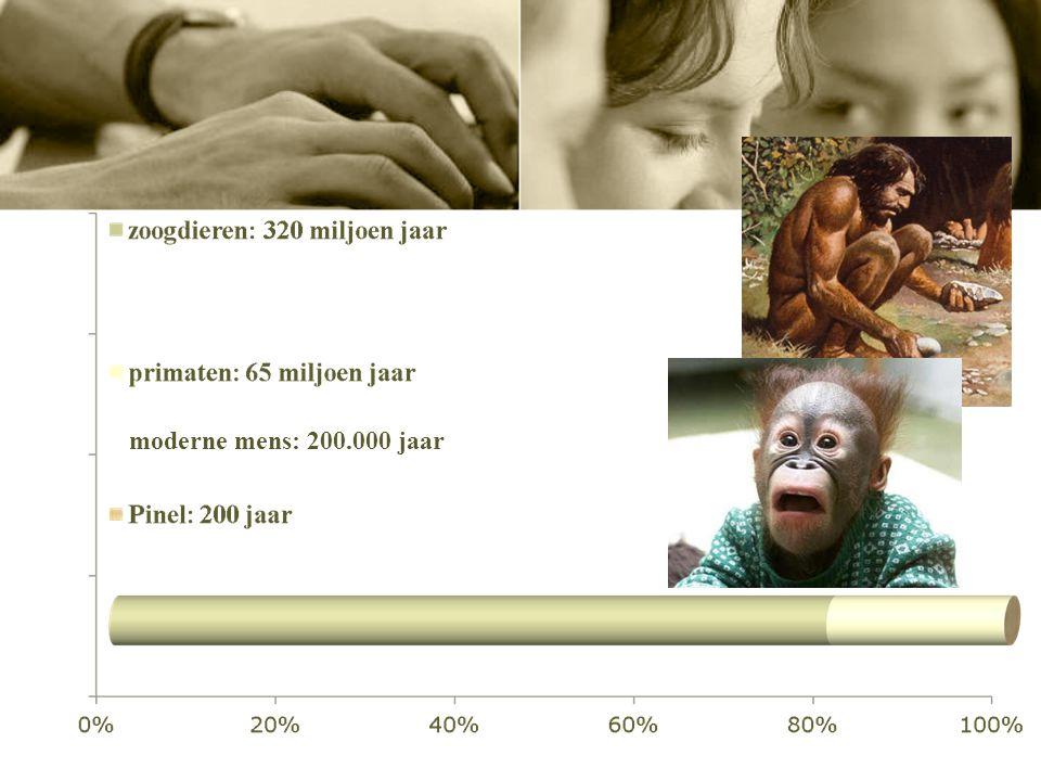 moderne mens: 200.000 jaar