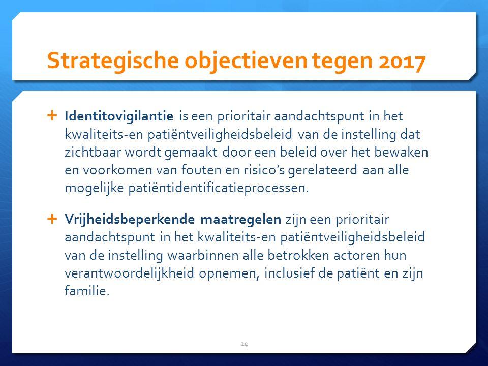 Strategische objectieven tegen 2017