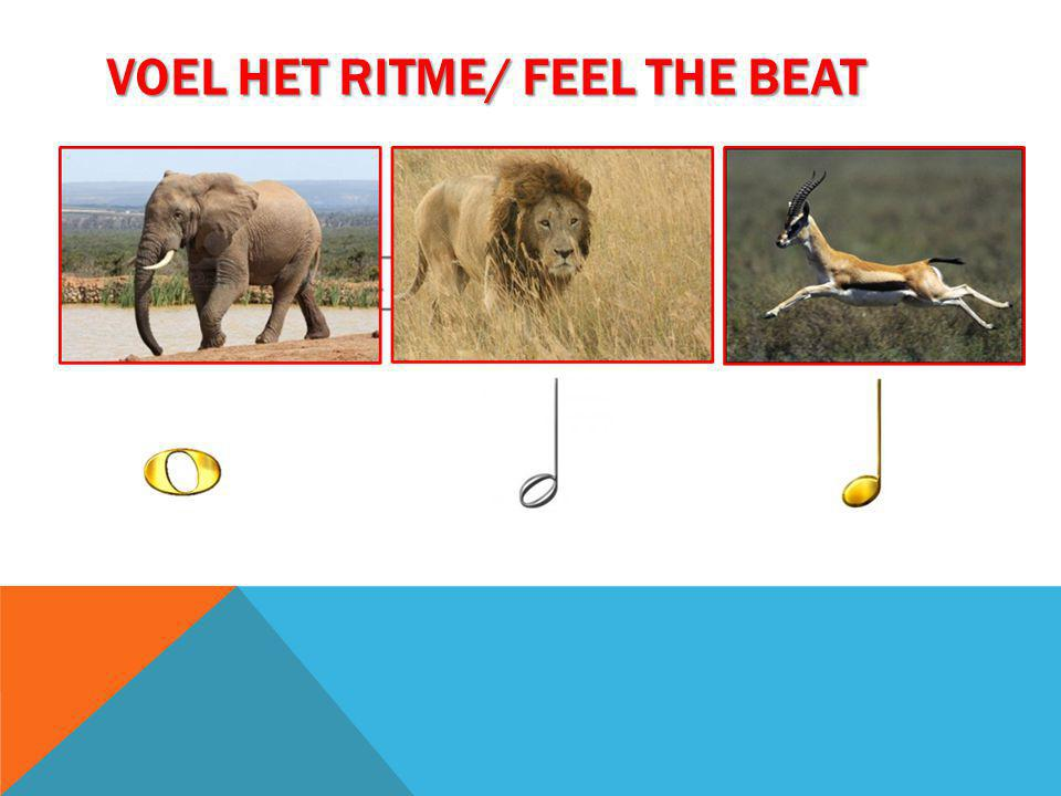 Voel het ritme/ feel the beat