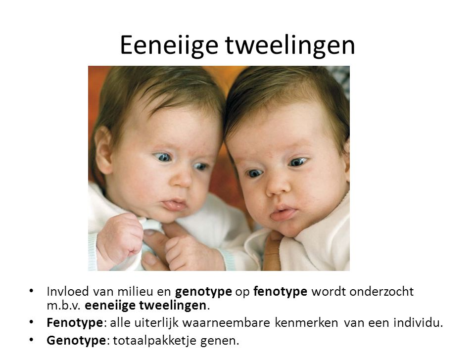 Eeneiige tweelingen Invloed van milieu en genotype op fenotype wordt onderzocht m.b.v. eeneiige tweelingen.