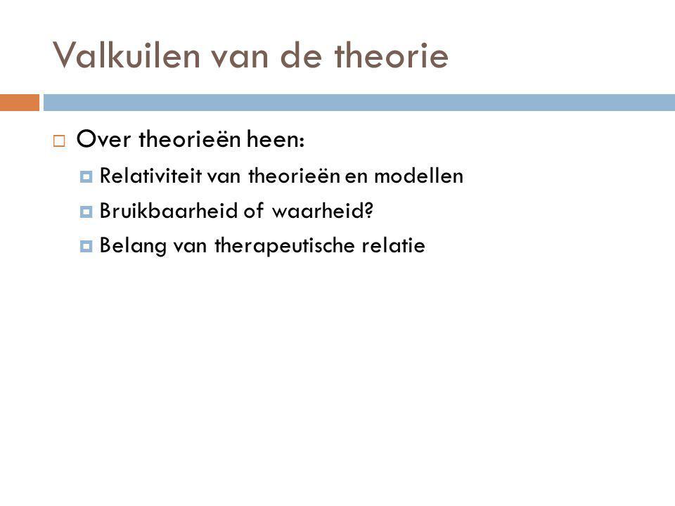 Valkuilen van de theorie