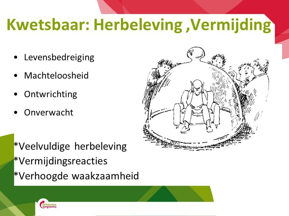 Kwetsbaar: Herbeleving ,Vermijding