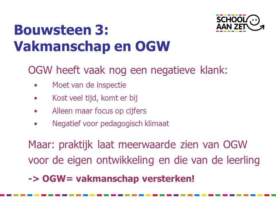 Bouwsteen 3: Vakmanschap en OGW