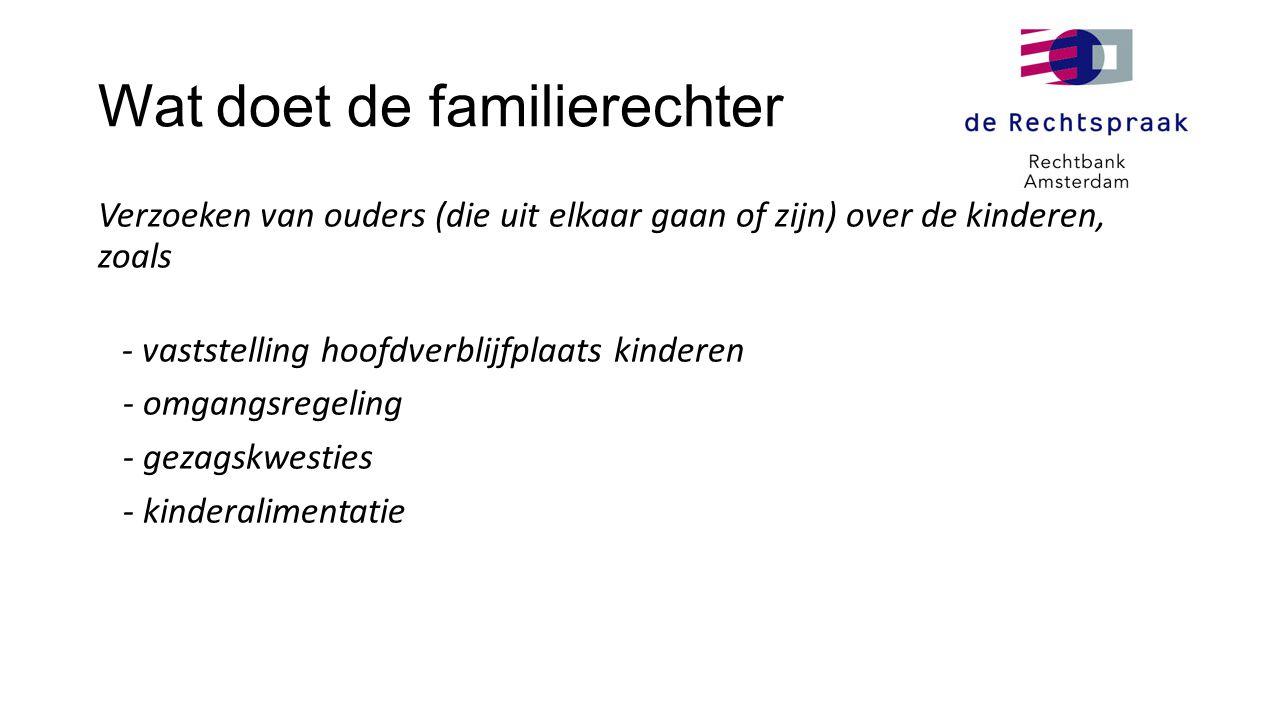 Wat doet de familierechter