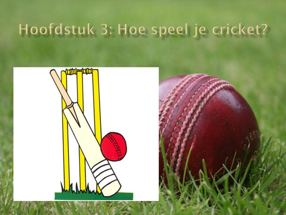 Hoofdstuk 3: Hoe speel je cricket
