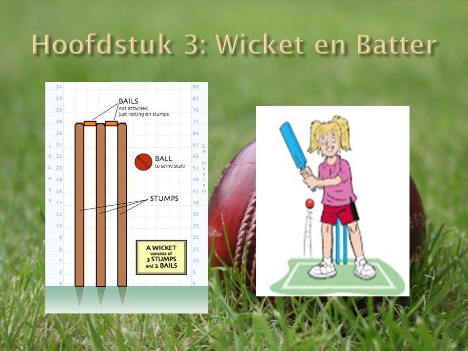 Hoofdstuk 3: Wicket en Batter