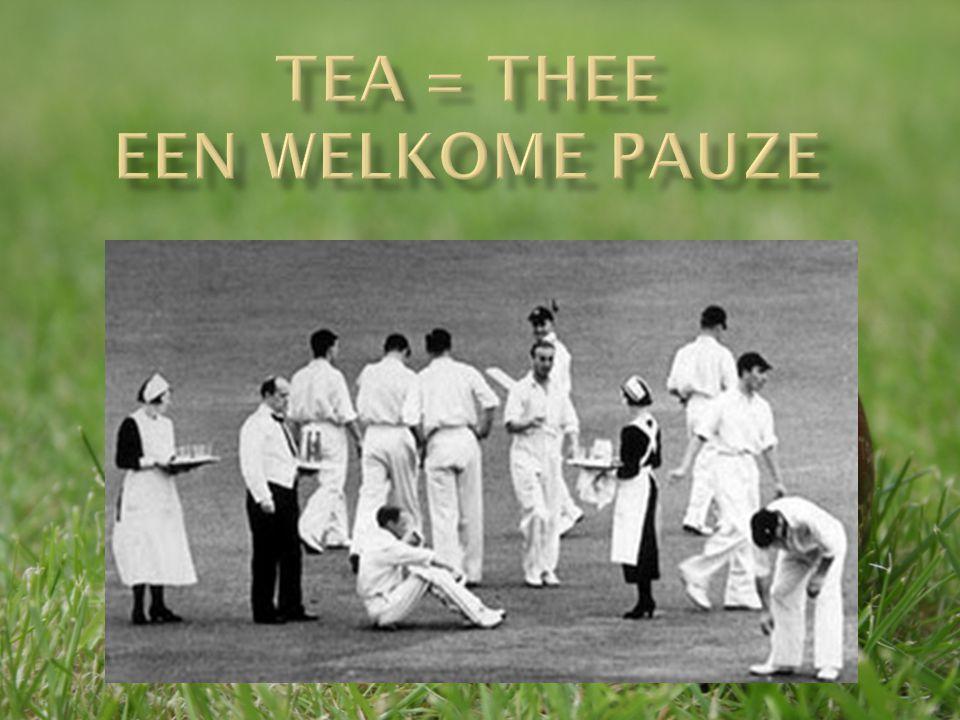 Tea = Thee een welkome pauze