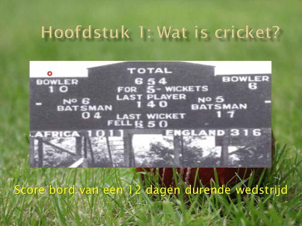 Hoofdstuk 1: Wat is cricket