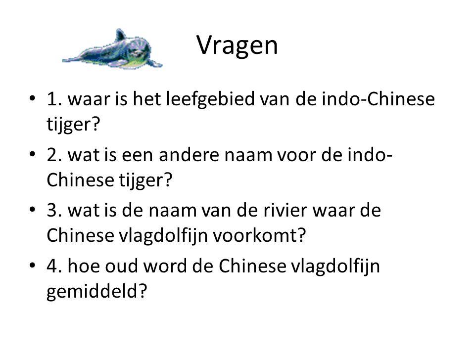 Vragen 1. waar is het leefgebied van de indo-Chinese tijger