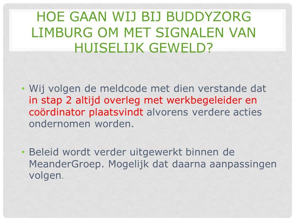 Hoe gaan wij bij Buddyzorg Limburg om met signalen van huiselijk geweld
