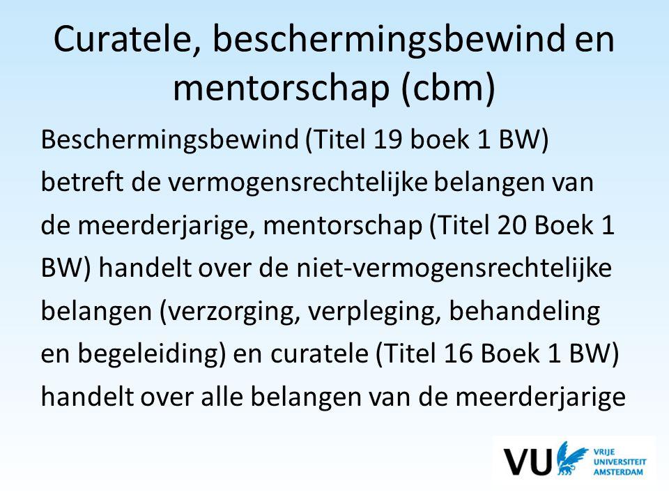 Curatele, beschermingsbewind en mentorschap (cbm)