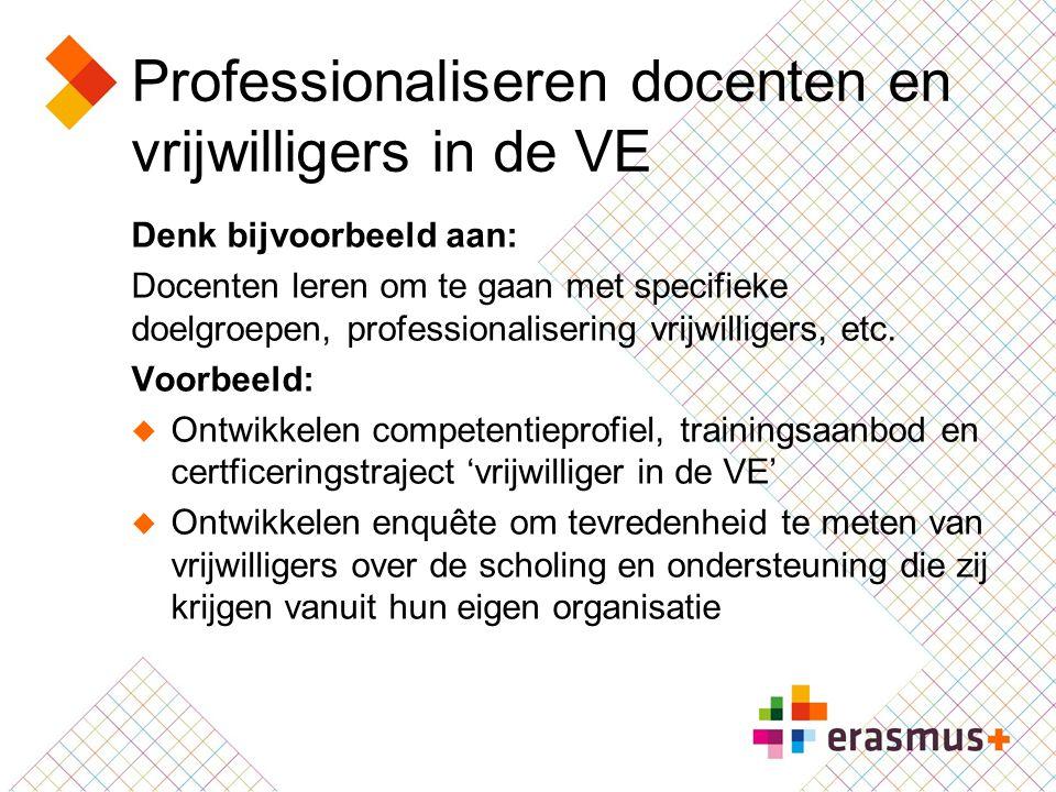 Professionaliseren docenten en vrijwilligers in de VE