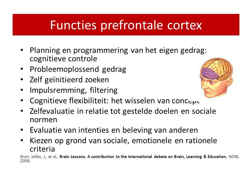 Functies prefrontale cortex