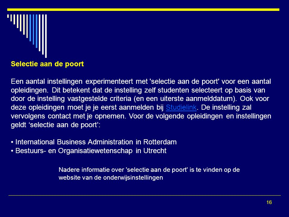 International Business Administration in Rotterdam